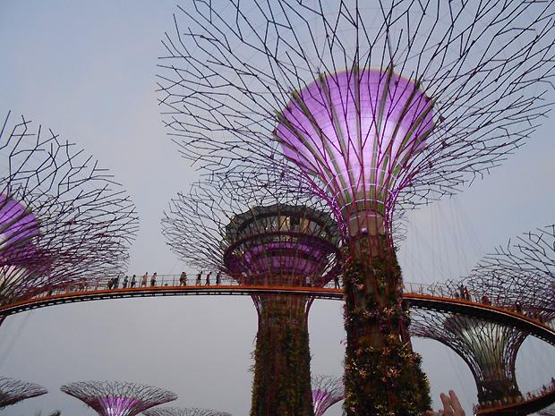 singapore-6