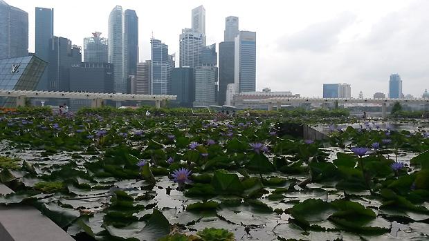 singapore-9